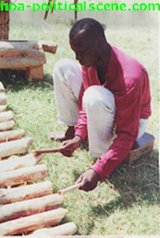 Ezine Acts African Art: Southern Sudanese Arts and Customs, Musical Instrument Made of Wood.
