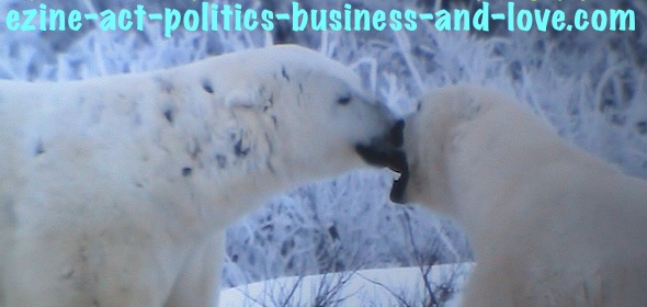 Ezine Acts Photography: Pair of Polar Bears Kissing.
