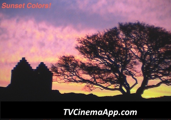 Home Biz Trends - Ezine Acts RSS: to syndicate sunset colors across pictures platforms and learn from it how it works.