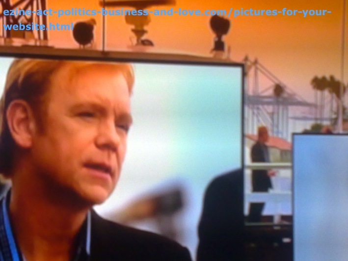 Pictures for Your Website, David Caruso, Horatio Caine, CSI Miami