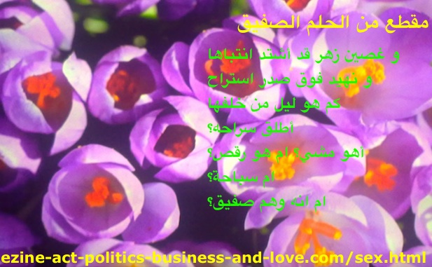 Sex Shades in Cheeky Dream, Arabic Poetry by Khalid Osman