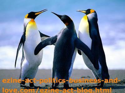 Penguins Love.