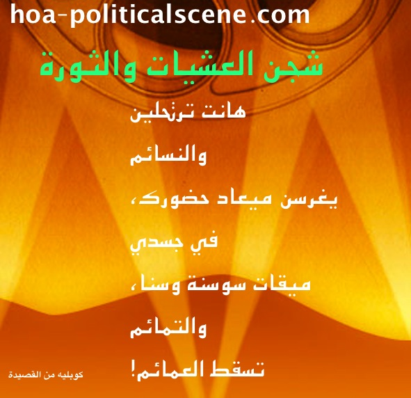 Digital and Video Products: Arabic Poems by Khalid Osman Designed on Images, as Image Content.