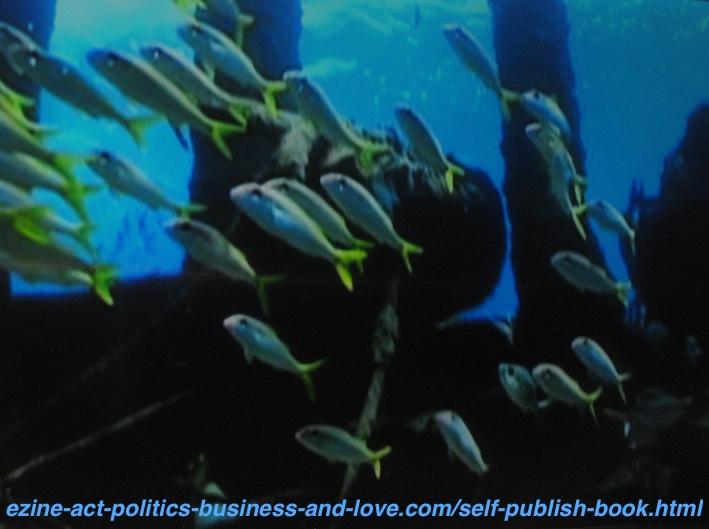 Self Publish Fish Species Pictures Book