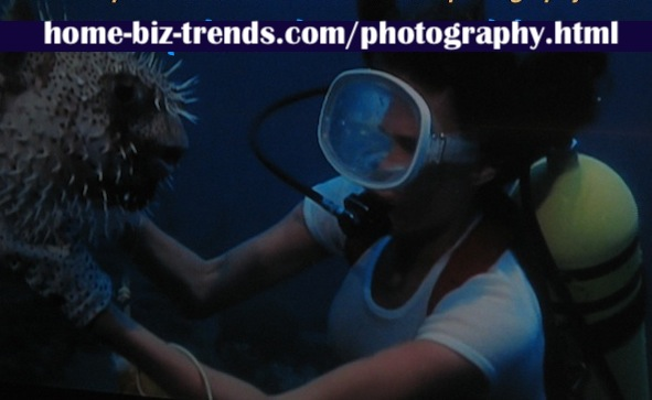 home-biz-trends.com/photography.html - Photography: Sea diving, underwater species.